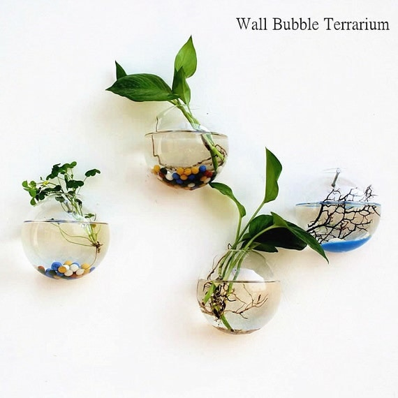 Set of 4 empty glass wall bubble terrariums indoor wall - Vase decoration interieur ...