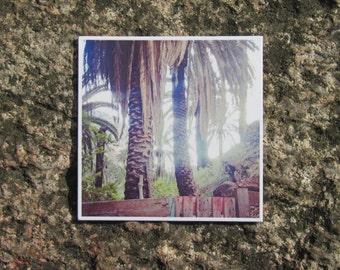 "Fridge Magnet ""Palmtrees"""