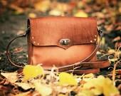Leather Crossbody Bag Women Leather Messenger Fur Bag woman leather bag brown leather small leather purses Belt Bag Hip Bag Pony iPad purse