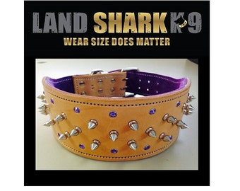 Natural and Purple Studded Suede Leather Dog Collar with Purple Crystals and Nickel Fittings