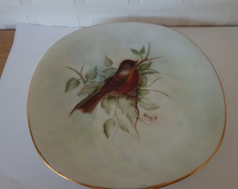 Hand painted bird on a plate