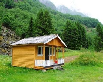 Build your own 16' X 24' cabin plus loft (DIY Plans) Fun to build ! Save money!