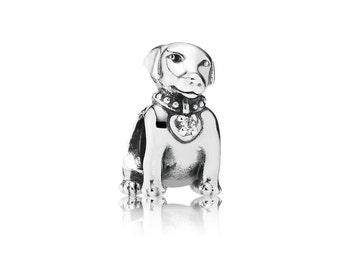 Labrador, Clear CZ  PANDORA's cute Labrador dog charm 791379cz
