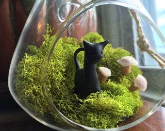 Fairy Garden Black Cat, Terrarium
