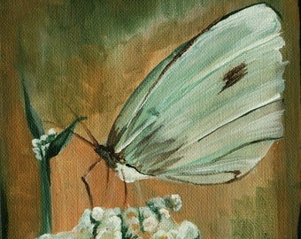 """Original White Butterfly 6"""" square Acrylic painting Cottage Garden Shabby Chic decor"""