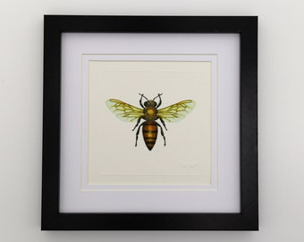 European Honeybee Unframed Miniature Print x 1