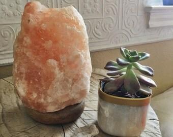 Plastic Marble Pot Planter