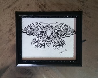 Moth Ink Illustration