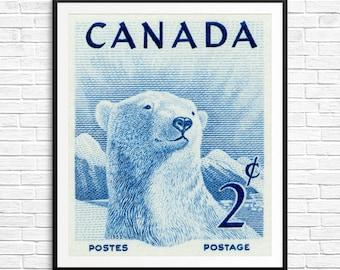 P076 Polar bear, polar bears, polar bear stamps, polar bear art, polar bear prints, polar bear posters, white bear, winter bear, ice bears