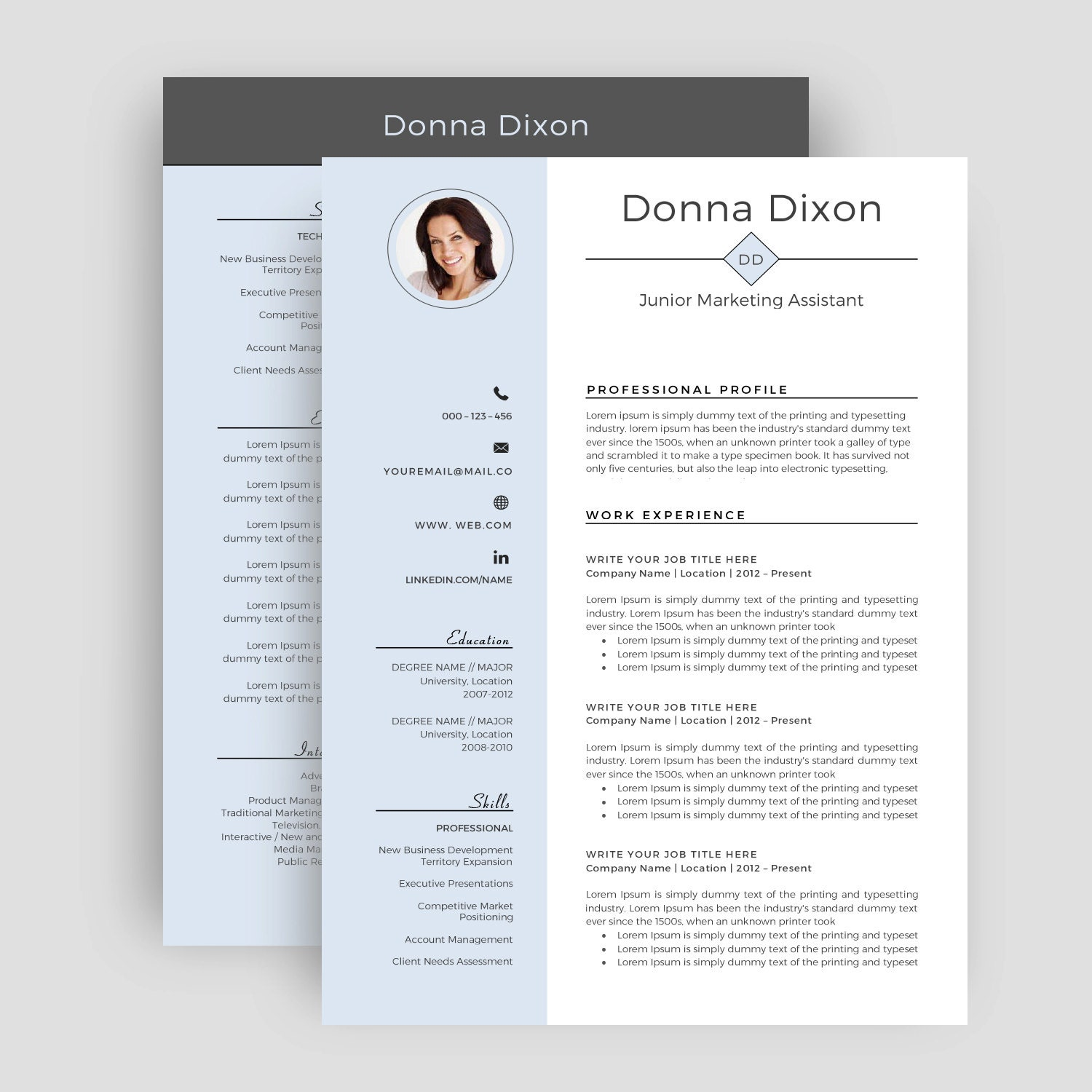 professional resume template cv template for word two page
