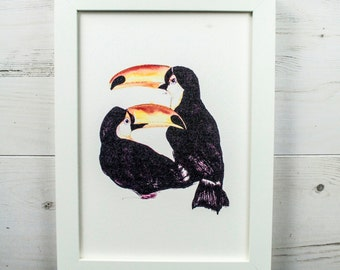 Pair of Toucans, Limited Edition Tropical Bird Print