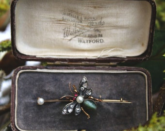 Fidra - Diamond, Pearl, Ruby & Catseye Victorian Insect Brooch