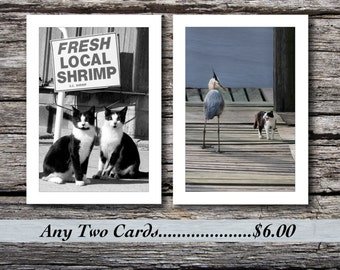 Handmade Photo Note Cards, Pick any two for 6.00