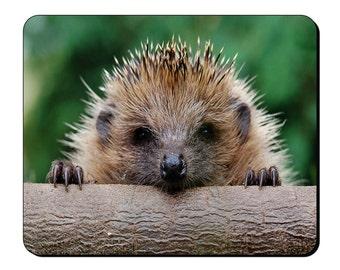 Mouse Mat - Cute Hedgehog - Mouse Pad AI101