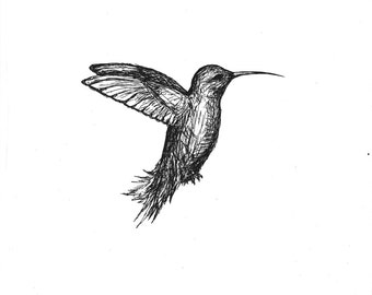 B&W Humming Bird II