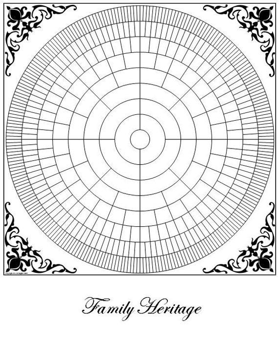 genealogy circle chart blank 16 x 20