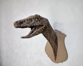 Cardboard Coelophysis trophy head