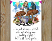 Alice In Wonderland Reality Metal Tin Plaque  Alice Cheshire Cat Caterpillar Wonderland Wall Plaque