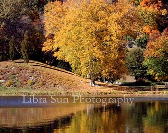 Fall Foliage Print, Fine Art Photography
