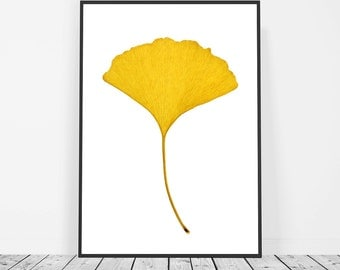 Yellow Print, Gingko Leaf Print, Yellow Wall Art, Large Wall Art, Nature Print, Instant Download Printable Art, Yellow Home Decor Leaf Art