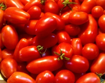 San Marzano Tomatoes *SEEDS* - Homegrown Organic - Free Shipping