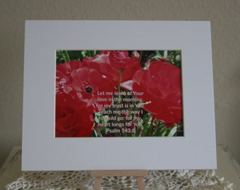 Red poppies matted 5x7 photograph