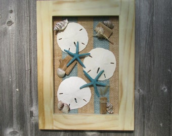 Seashell and sand dollar wall hanging with natural finished frame.