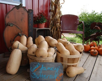 Fall vegetable stand