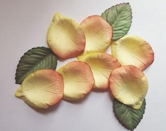 Paper Rose Petals - Peach Ivory - Scatter Table Wedding Decoration Flower Basket