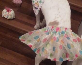 Sparlke Birthday Dog Tutu