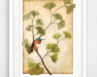 Hummingbird with Ginko, Hummingbird art print, Ginko print, powder room art, bedroom art, bird art print, botanical art print, garden art