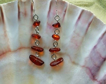 Baltic Amber Earrings, Wire Wrapped Earrings, Wire Wrapped Jewelry, Hypoallergenic Earrings, Amber Earrings, Nature Jewelry, Eco Jewelry