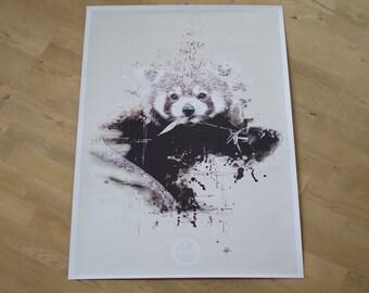 Poster: Red Panda