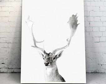 Deer Print,Deer  antler,Woodlands Decor,Deer Head,Nursery Black and White, Animal Print, Printable Art,Deer Digital Print,Animal Art Print