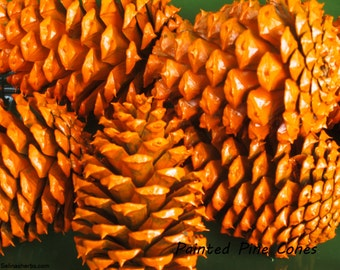 Painted Pine Cones, 10 Bright Orange-Painted Pine Cones/Display/Decoration/Crafts/Themes/Holiday/Wedding/Rustic/Chic/Fall Decor/Nautical