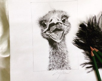 Custom Pet or Animal Portrait