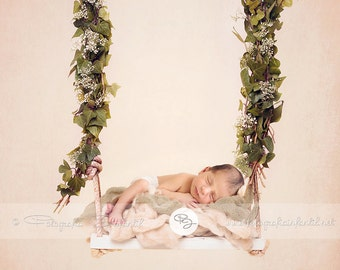 Newborn Digital Backdrop (swing/boy/brown)