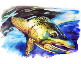 On the Run - Brown Trout
