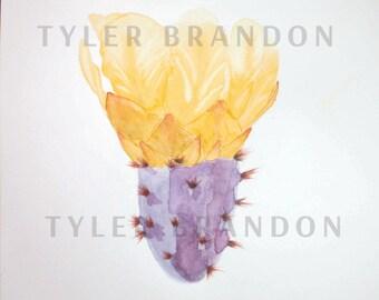Purple Prickly Pear botanical illustration (watercolor) #2