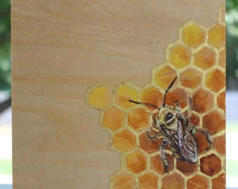 Bee on 22K gold leaf honeycomb 6x6 inches
