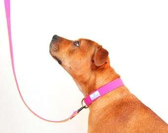 Matching Dog Collar and Leash Set Pink Yellow Webbing Dog Collar and Lead Australian Made Dog Collars Australia Strong Dog Leash Two Tone