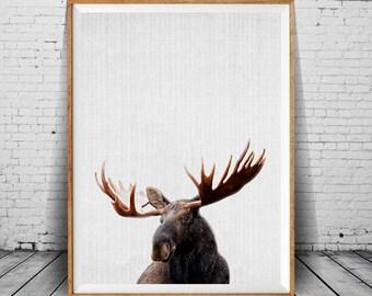Moose Print, Moose Wall Decor, Moose Head, Nursery Animal Print, Wall Art, Moose Printable Instant Digital Download, Colorful Safari Decor