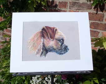 A4 Print of Original Pastel drawing of a Border Terrier 'On Watch'