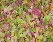 Destash Glass Frit Blend Pink Green Opal Yellow COE 96 0.5 oz Bag