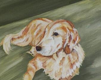 Gazing Golden Original Oil Painting Old Golden Retriever Dog Pets Animals Canine by Artist debra alouise