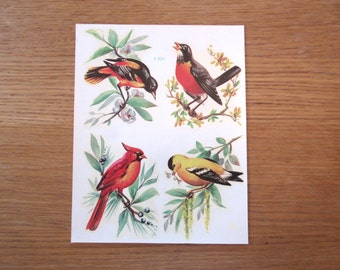 Vintage bird decals, Meyercord decals, unused decals, robin decal, cardinal decal, bird image transfers, crafting transfers