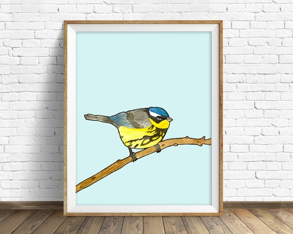 Magnolia Warbler - bird, drawing, watercolor, bird print, blue, art print, wall art print, large wall art, bird art print, woodland wall art