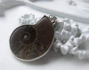 Gemstone Pendant Ammonite Pendant Item No. 2005 5414