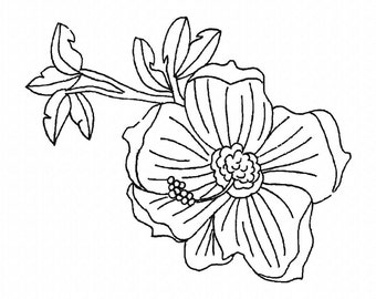 Floral Drawing  Machine Embroidery Design...3047