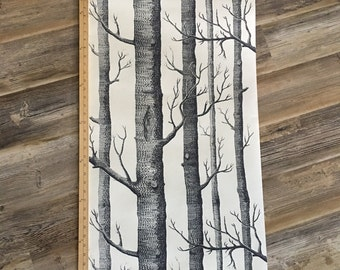 Birch Tree Wallpaper Like in Regina's Office in Once Upon a Time for Cake Table Backdrops and Photobooths